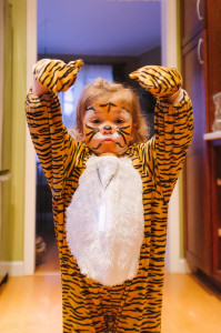 Tiger Halloween Costumes