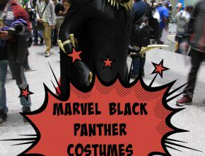 Black Panther Halloween Costumes